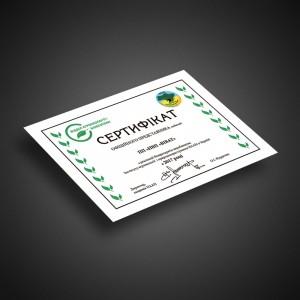 Дипломы, грамоты, сертификаты Арт-технология
